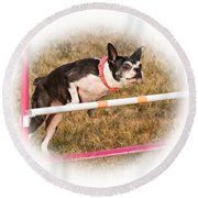 Round Beach Towel featuring the photograph Boston Agility by Debbie Stahre