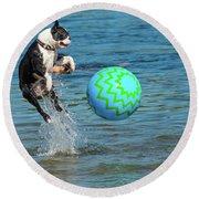Boston Terrier High Jump Round Beach Towel