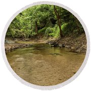 Round Beach Towel featuring the photograph Bottle Creek by JC Findley
