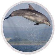 Bottlenose Dolphin - Scotland #3 Round Beach Towel