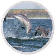 Bottlenose Dolphin - Moray Firth Scotland #49 Round Beach Towel