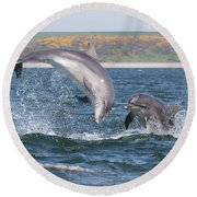 Bottlenose Dolphin - Moray Firth Scotland #49 Round Beach Towel