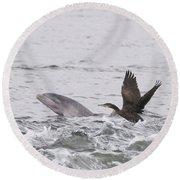Baby Bottlenose Dolphin - Scotland #10 Round Beach Towel