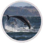 Bottlenose Dolphins - Scotland  #25 Round Beach Towel