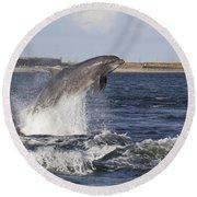 Bottlenose Dolphin - Scotland  #26 Round Beach Towel