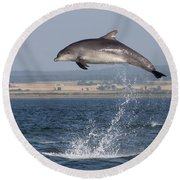 High Jump - Bottlenose Dolphin  - Scotland #42 Round Beach Towel