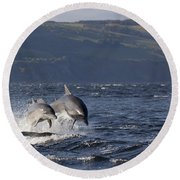 Bottlenose Dolphins Leaping - Scotland  #37 Round Beach Towel