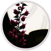 Bougainvillea By Lamplight Round Beach Towel by Craig Wood