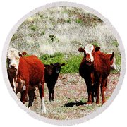 Bovine Round Beach Towel