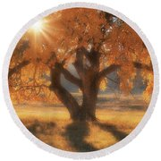 Boxelder's Autumn Tree Round Beach Towel