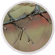 Branch With Water Abstract Round Beach Towel