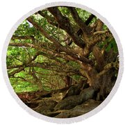 Branches And Roots Round Beach Towel