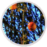 Round Beach Towel featuring the photograph Branches Apples by Jerry Sodorff
