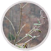 Branches In Ice Round Beach Towel