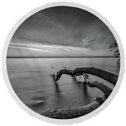 Branching Out - Bw Round Beach Towel