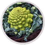 Brassica Oleracea Round Beach Towel by Heather Applegate
