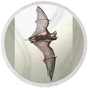 Brazilian Free-tailed Bat Round Beach Towel