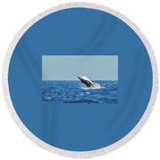 Breaching Humpback Off Bermuda Round Beach Towel by Jeff at JSJ Photography