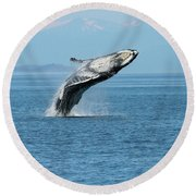 Breaching Humpback Whales Happy-3 Round Beach Towel