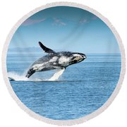 Breaching Humpback Whales Happy-4 Round Beach Towel