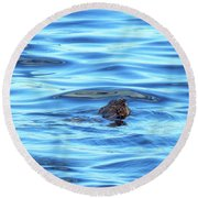 Breaking Surface Round Beach Towel
