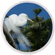 Round Beach Towel featuring the photograph Breeding Beauty by Fraida Gutovich
