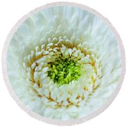 Round Beach Towel featuring the photograph Bright As A Lime by Christi Kraft