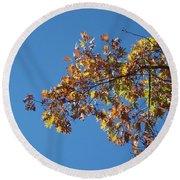 Bright Autumn Branch Round Beach Towel