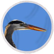 Round Beach Towel featuring the photograph Bright Beak Blue .png by Al Powell Photography USA