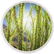 Round Beach Towel featuring the photograph Bright Light In The Desert by T Brian Jones