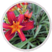Bright Orange Day Lily Round Beach Towel