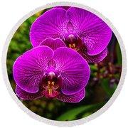 Bright Purple Orchids Round Beach Towel