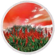 Round Beach Towel featuring the photograph Bright Red Aloe Flowers By Kaye Menner by Kaye Menner
