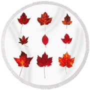 Bright Red Autumn Leaves Round Beach Towel