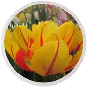 Bright Tulip Round Beach Towel by MTBobbins Photography