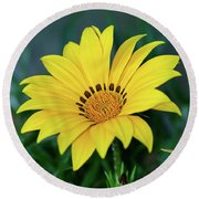 Round Beach Towel featuring the photograph Bright Yellow Gazania By Kaye Menner by Kaye Menner