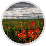 Brighten The Day - Indian Paintbrush On Stormy Day In Oklahoma Round Beach Towel