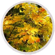 Round Beach Towel featuring the photograph Brilliant Maple Leaves by Will Borden