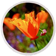 Round Beach Towel featuring the photograph Brilliant Spring Poppies by Rona Black
