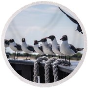 Round Beach Towel featuring the photograph Bringing Up The Rear by Phil Mancuso