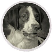 Round Beach Towel featuring the photograph Brittany In Black And White by Greg Mimbs