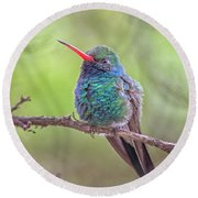 Broad-billed Hummingbird 3652 Round Beach Towel