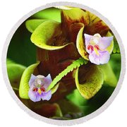 Round Beach Towel featuring the photograph Bromeliad With Tiny Blooms by Nadalyn Larsen