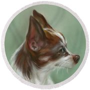 Brown And White Chihuahua Round Beach Towel