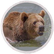 Brown Bear 10 Round Beach Towel