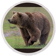 Brown Bear 14.5 Round Beach Towel