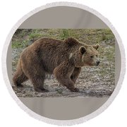 Brown Bear 6 Round Beach Towel