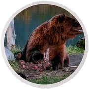 Brown Bear And Magpie Round Beach Towel