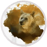 Brown Bear Round Beach Towel by Steven Richardson