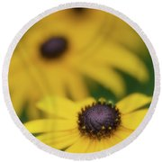 Round Beach Towel featuring the photograph Brown Eyed Susan by Bob Cournoyer